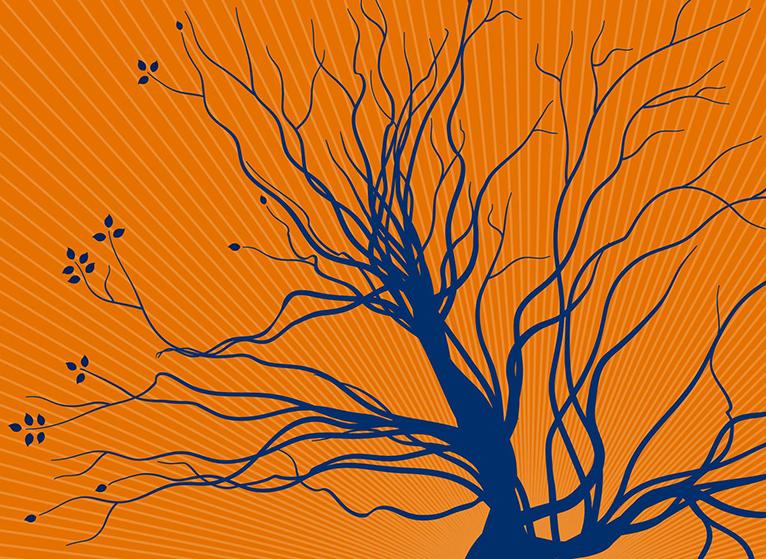 silhouette of trees on orange background