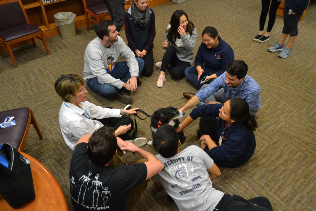 UVA medical and nursing students enjoying relaxing with a therapy dog.