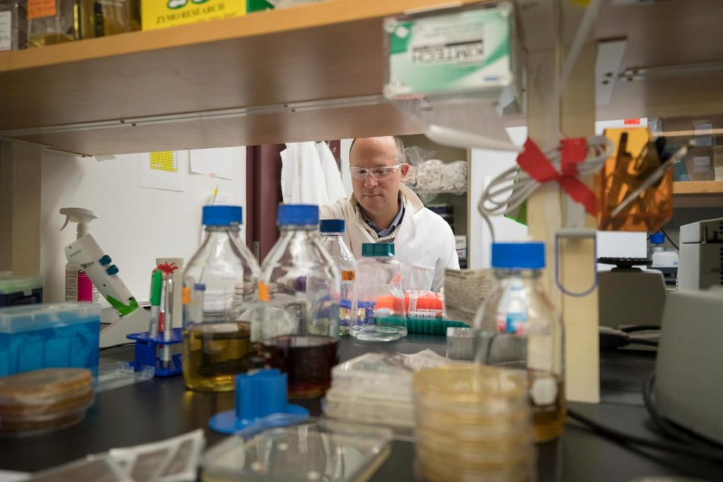 Day in and day out, Papin works with students in his lab. Many of them have gone on to lead similar labs around the country. (Photo by Dan Addison, University Communications)