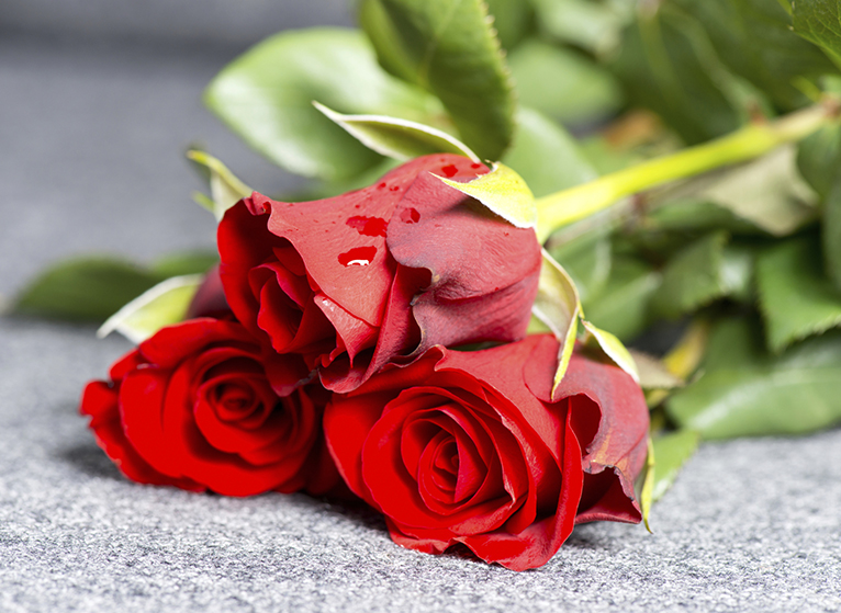 Photo: Roses on grave