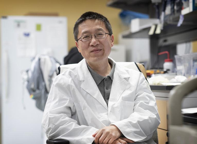 Photo of Hui Zong, PhD
