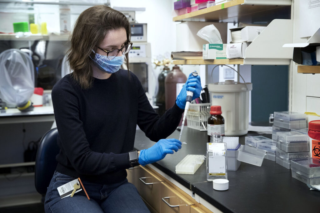 Allie Donlan is in the fourth year of her Ph.D. program at UVA, studying biomedical sciences. (Photo by Dan Addison, University Communications)